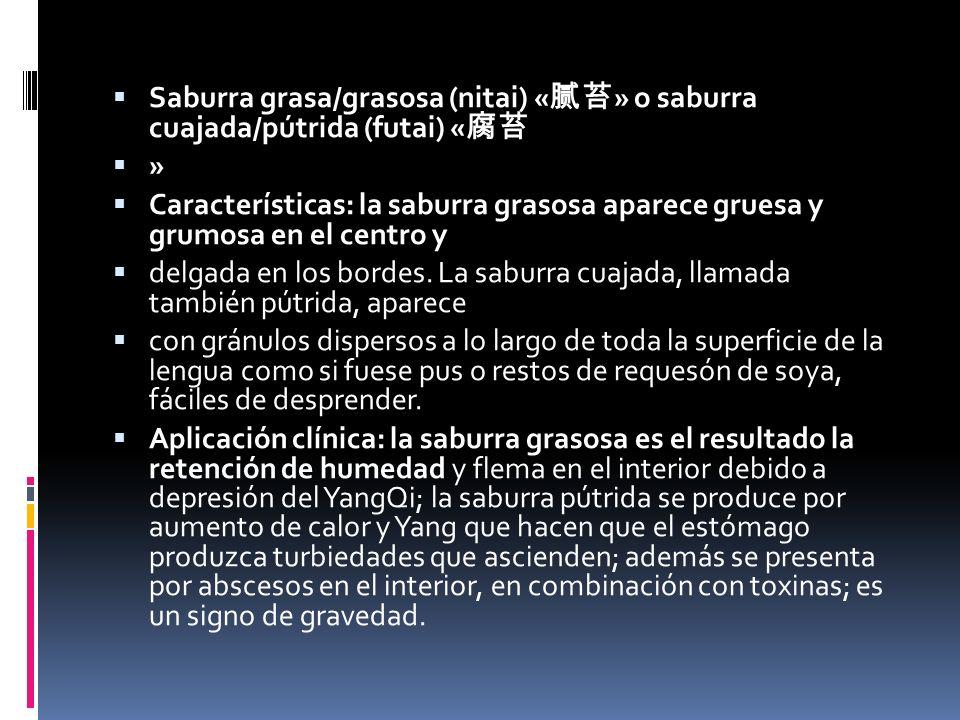 Saburra grasa/grasosa (nitai) «腻苔» o saburra cuajada/pútrida (futai) «腐苔