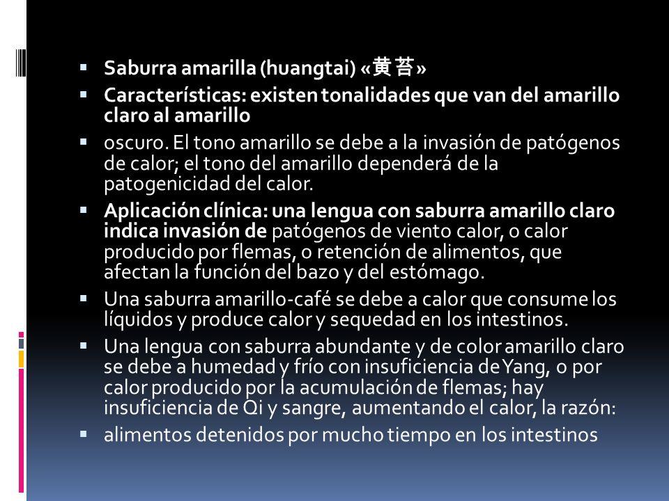 Saburra amarilla (huangtai) «黄苔»