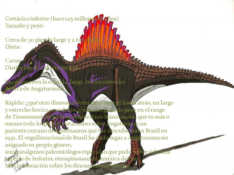 Cretácico inferior (hace 125 millones de años) Tamaño y peso: Cerca de 30 pies de largo y 2 toneladas Dieta: Carne Distinción de Características: Las espinas en la espalda, largo, hocico estrecho Acerca de Angaturama: Rápido: ¿qué otro dinosaurio tenía una navegó hacia atrás, un largo y estrecho hocico,cocodrilos, y una categoría de peso en el rango de Tiranosaurio Rex Si su respuesta es Spinosaurus, que es más o menos todo lo que necesitas saber sobre Angaturama,un pariente cercano de Spinosaurus que fue descubierta en Brasil en 1991. El orgullonacional de Brasil ha dado lugar a Angaturama ser asignado su propio género, aunquealgunos paleontólogos especulan que pudo haber sido una especie de Irritator, otrospinosaur de América del Sur.
