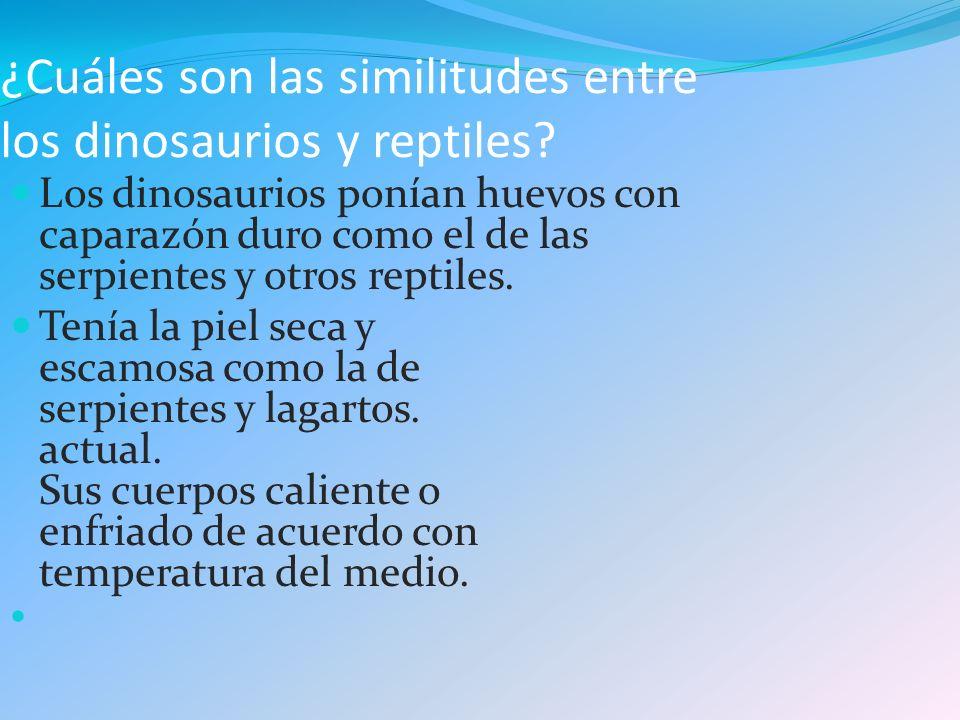 ¿Cuáles son las similitudes entre los dinosaurios y reptiles