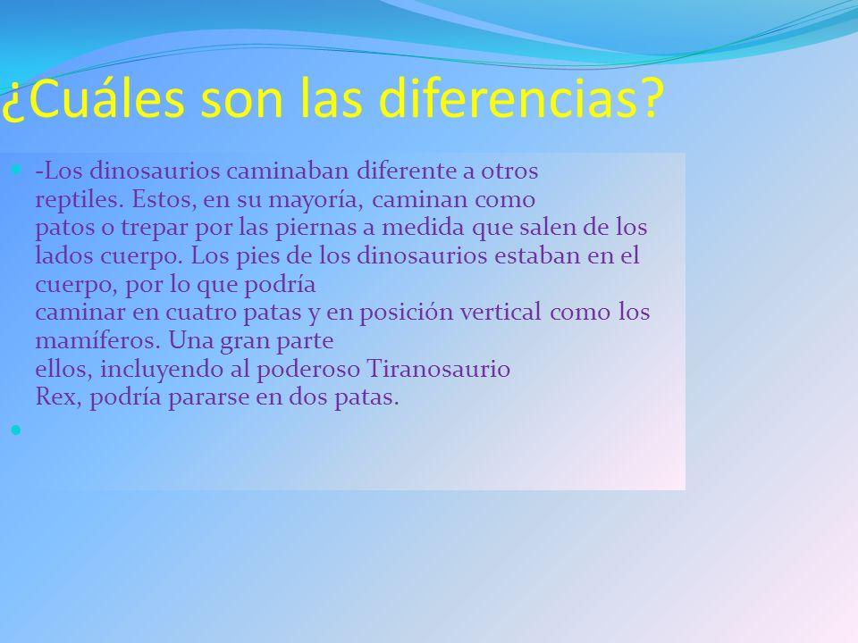 ¿Cuáles son las diferencias