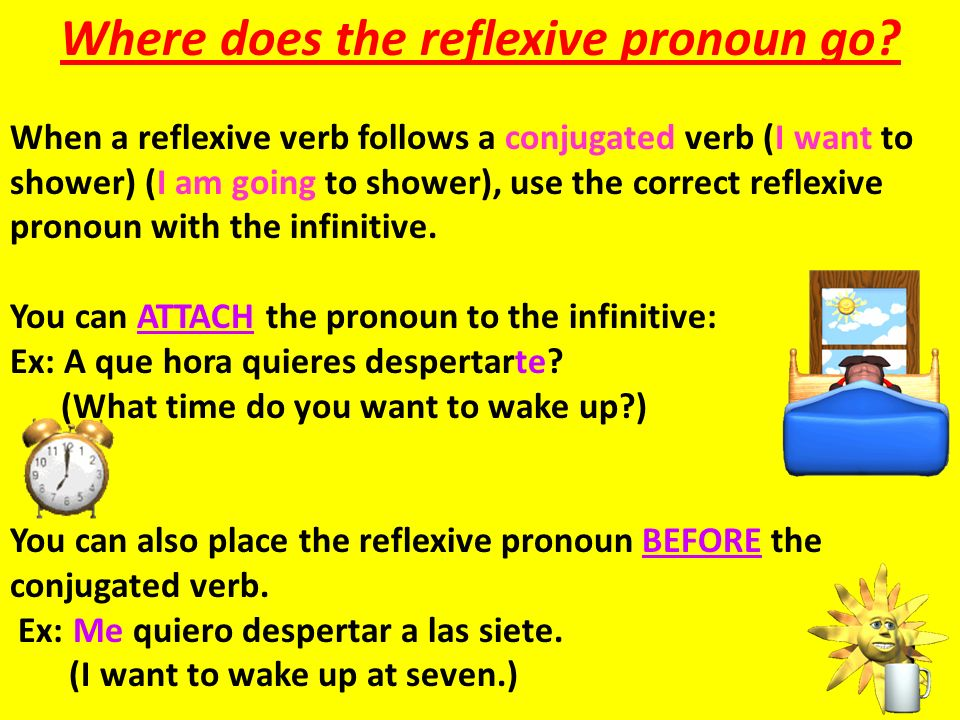 Where does the reflexive pronoun go