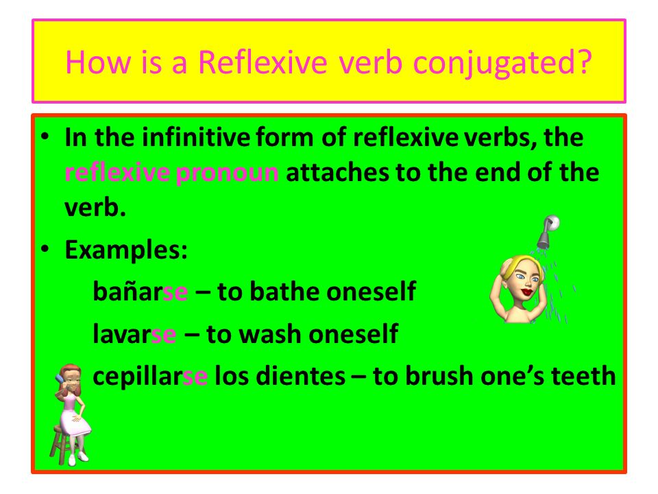 How is a Reflexive verb conjugated