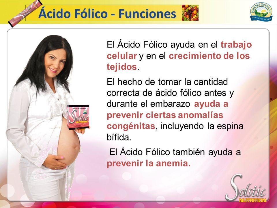 Ácido Fólico - Funciones