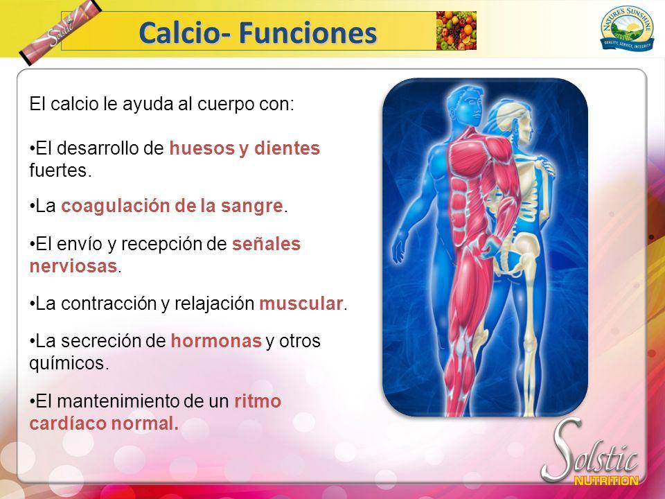Calcio- Funciones El calcio le ayuda al cuerpo con: