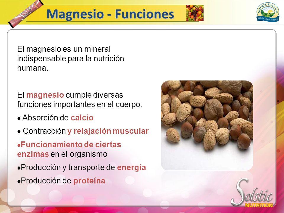 Magnesio - Funciones El magnesio es un mineral indispensable para la nutrición humana.