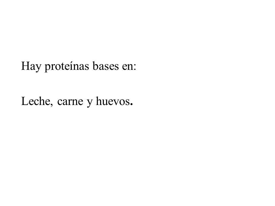 Hay proteínas bases en:
