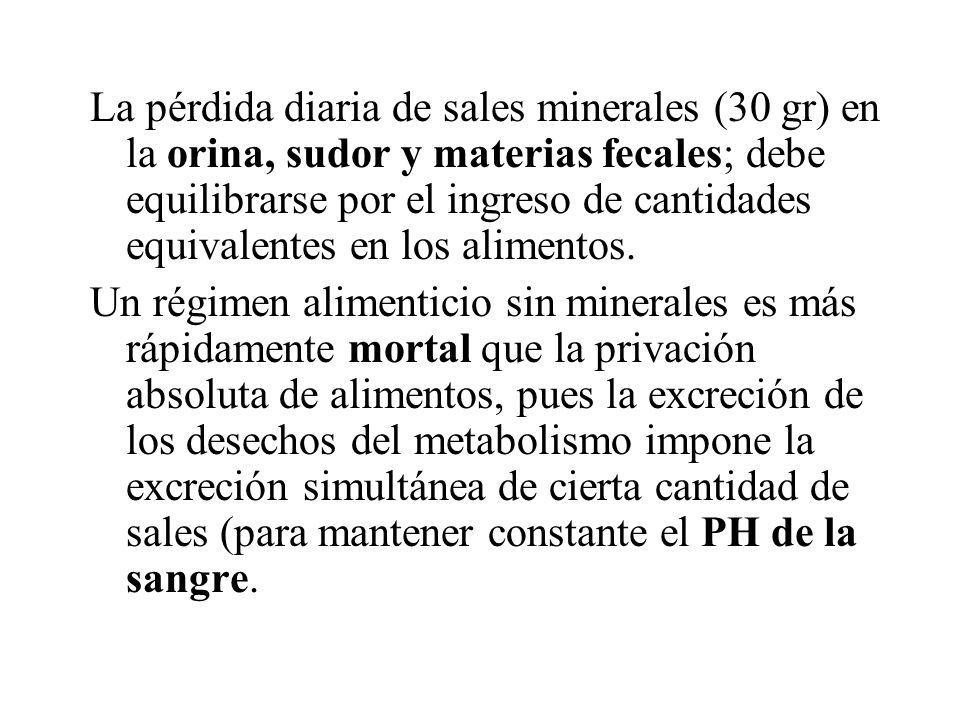 La pérdida diaria de sales minerales (30 gr) en la orina, sudor y materias fecales; debe equilibrarse por el ingreso de cantidades equivalentes en los alimentos.
