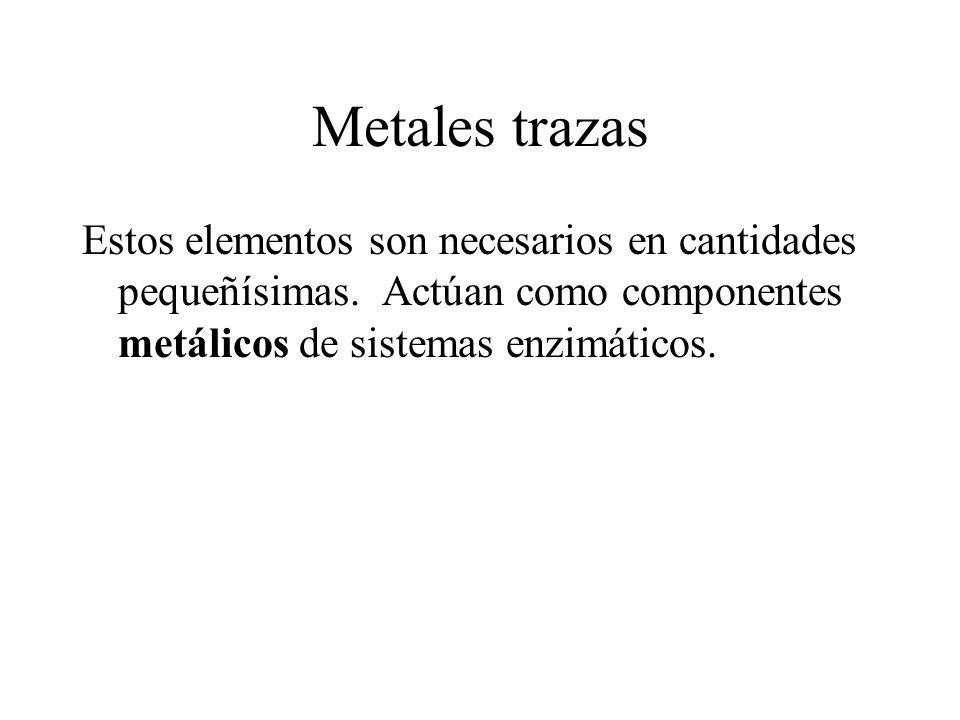 Metales trazas Estos elementos son necesarios en cantidades pequeñísimas.