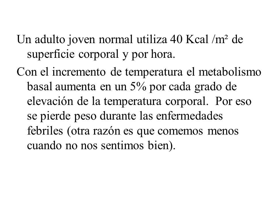 Un adulto joven normal utiliza 40 Kcal /m² de superficie corporal y por hora.