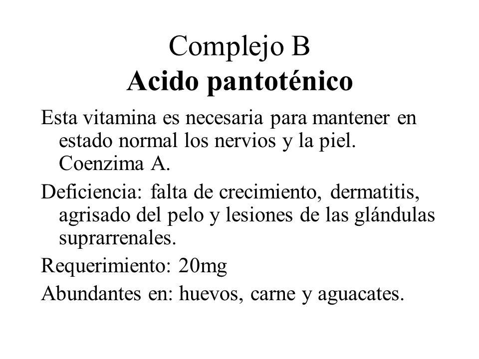 Complejo B Acido pantoténico