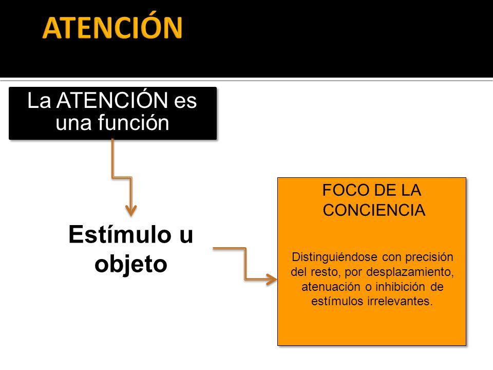 La ATENCIÓN es una función