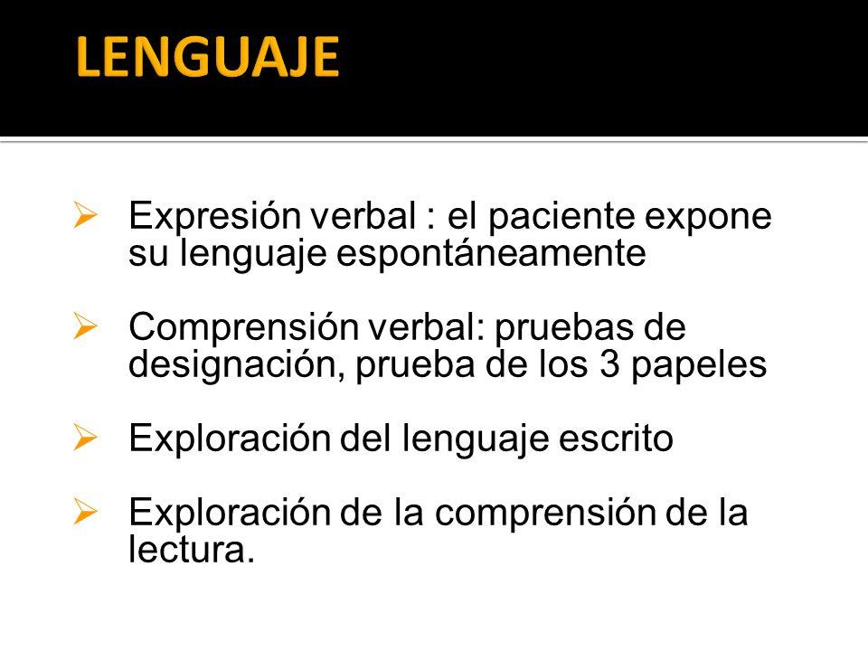 LENGUAJE Expresión verbal : el paciente expone su lenguaje espontáneamente. Comprensión verbal: pruebas de designación, prueba de los 3 papeles.