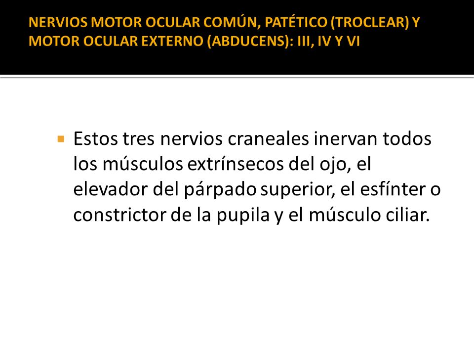 NERVIOS MOTOR OCULAR COMÚN, PATÉTICO (TROCLEAR) Y MOTOR OCULAR EXTERNO (ABDUCENS): III, IV Y VI