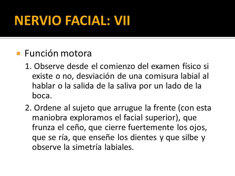NERVIO FACIAL: VII Función motora