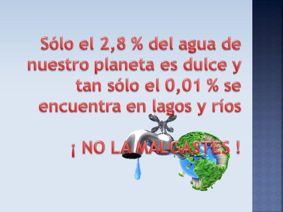 Sólo el 2,8 % del agua de nuestro planeta es dulce y tan sólo el 0,01 % se encuentra en lagos y ríos ¡ NO LA MALGASTES !
