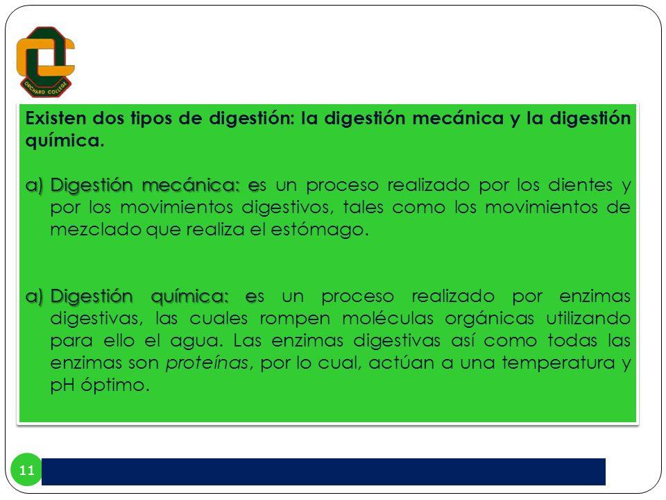 Existen dos tipos de digestión: la digestión mecánica y la digestión química.