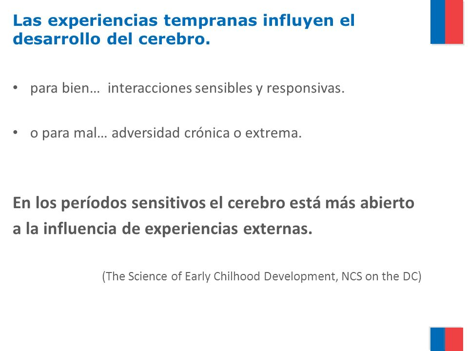 Las experiencias tempranas influyen el desarrollo del cerebro.