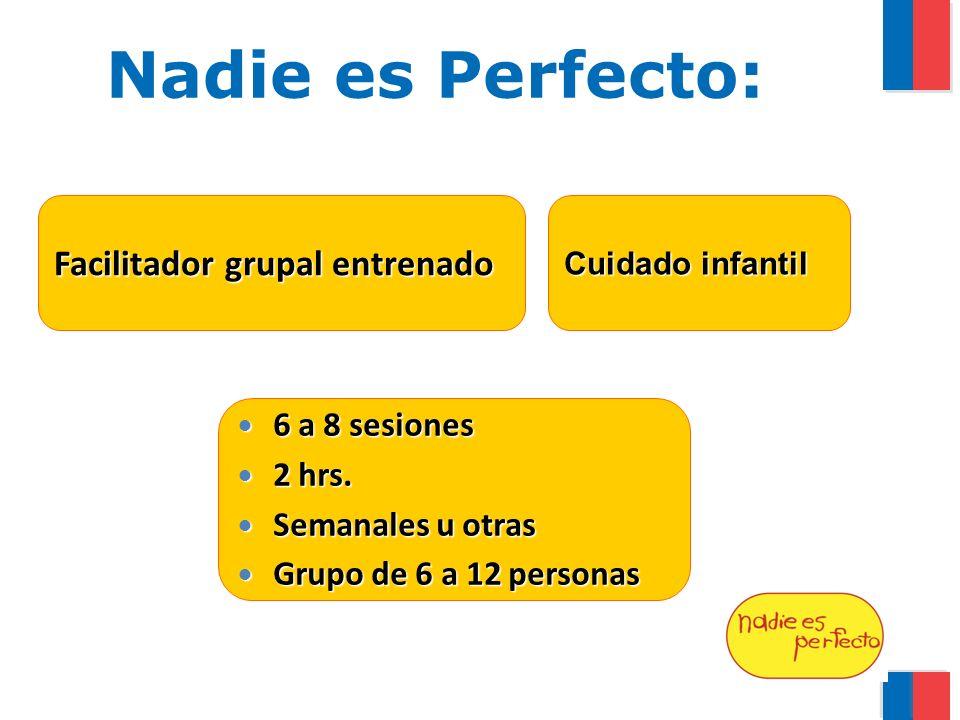 Nadie es Perfecto: Facilitador grupal entrenado 6 a 8 sesiones 2 hrs.