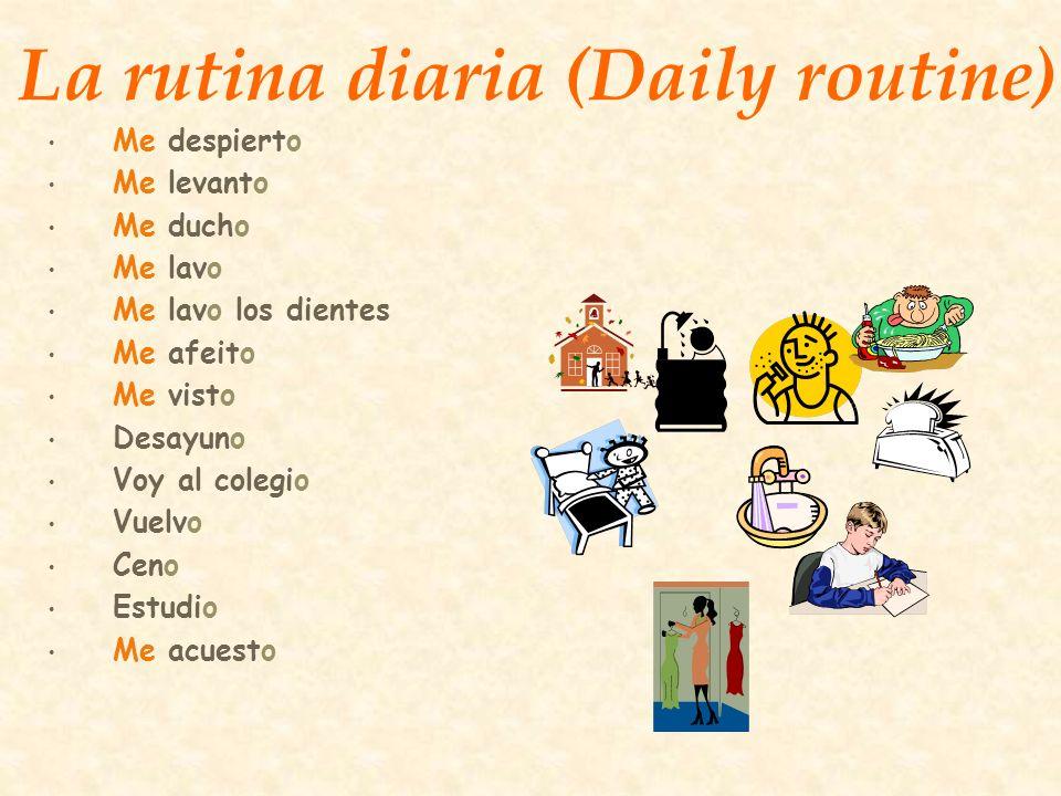La rutina diaria (Daily routine)
