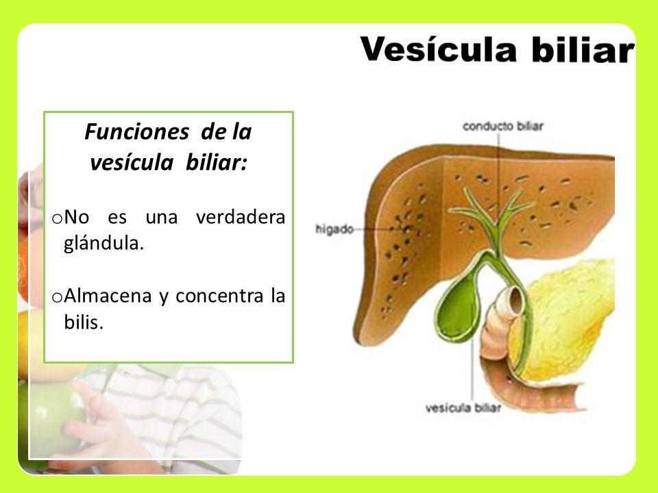 Funciones de la vesícula biliar: