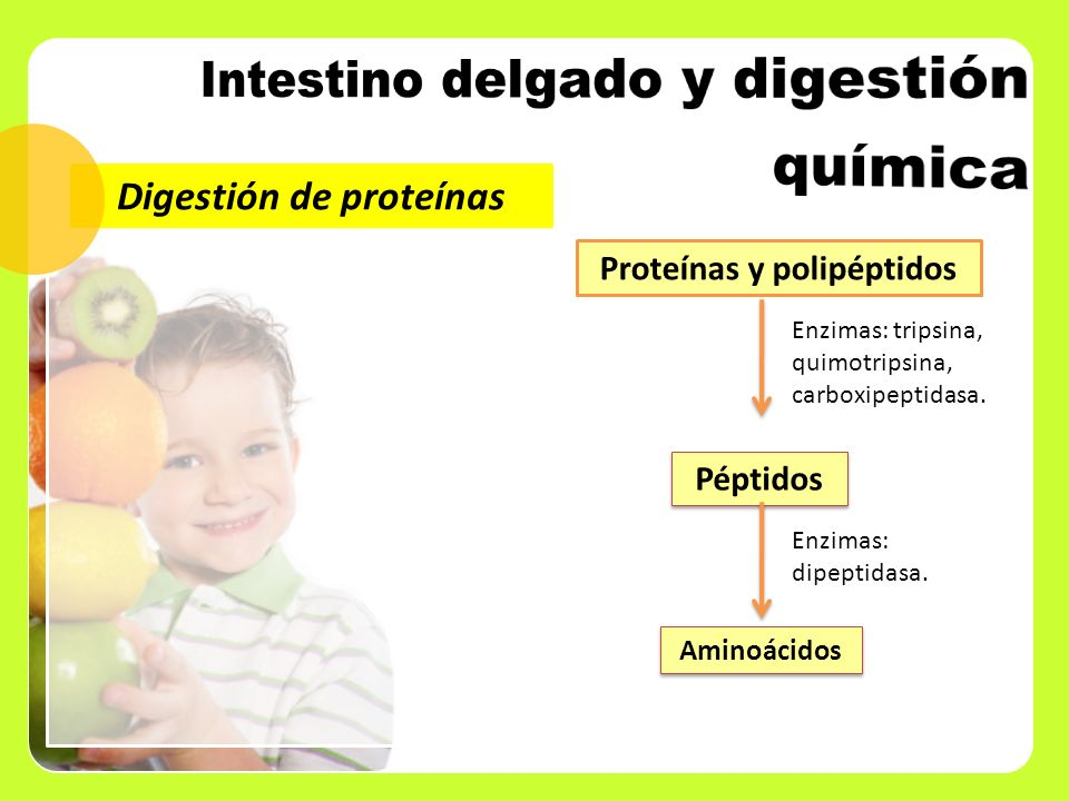 Proteínas y polipéptidos