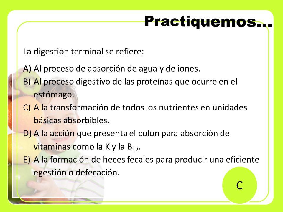 Practiquemos… C La digestión terminal se refiere: