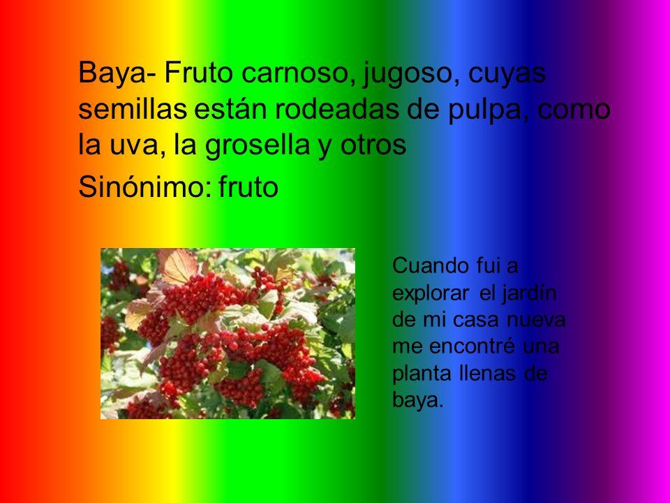 Baya- Fruto carnoso, jugoso, cuyas semillas están rodeadas de pulpa, como la uva, la grosella y otros Sinónimo: fruto