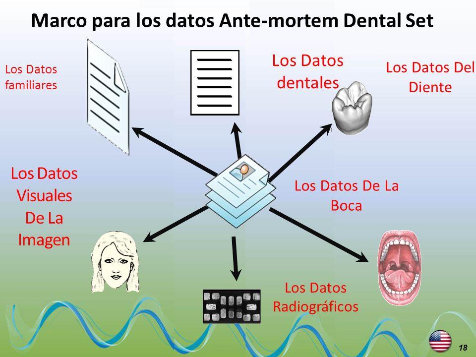 Marco para los datos Ante-mortem Dental Set