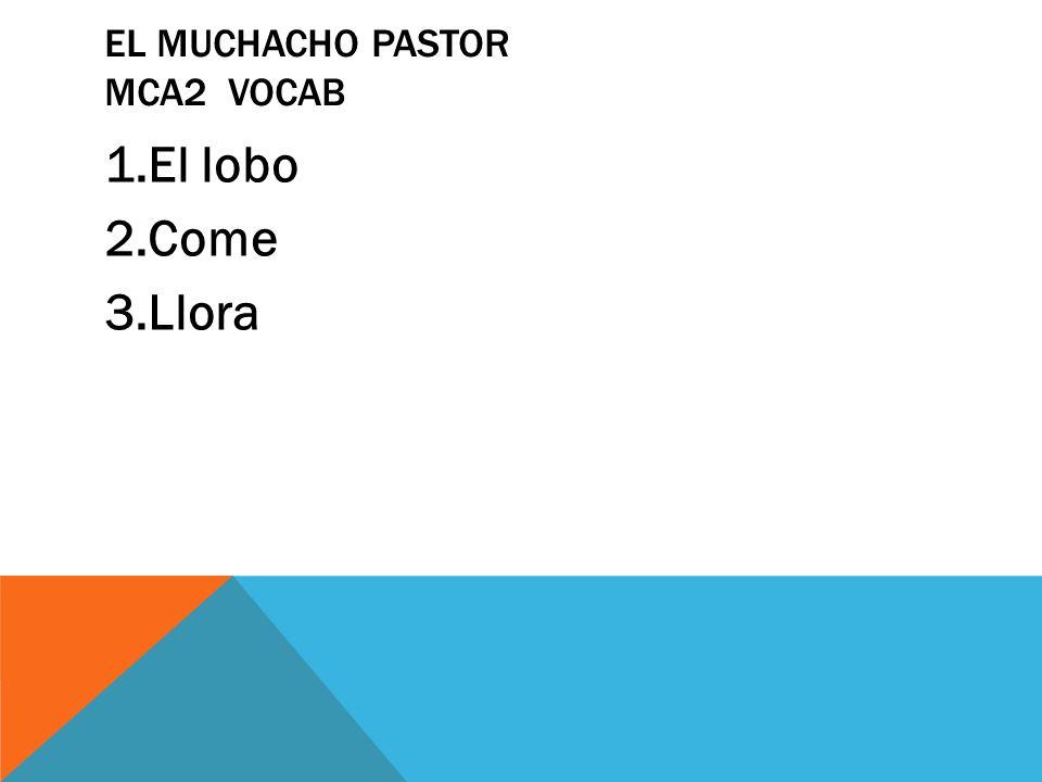 El muchacho pastor MCA2 vocab