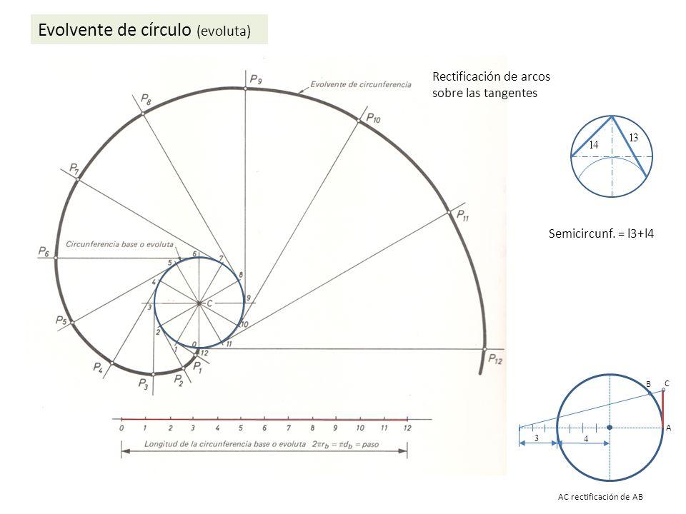 Evolvente de círculo (evoluta)