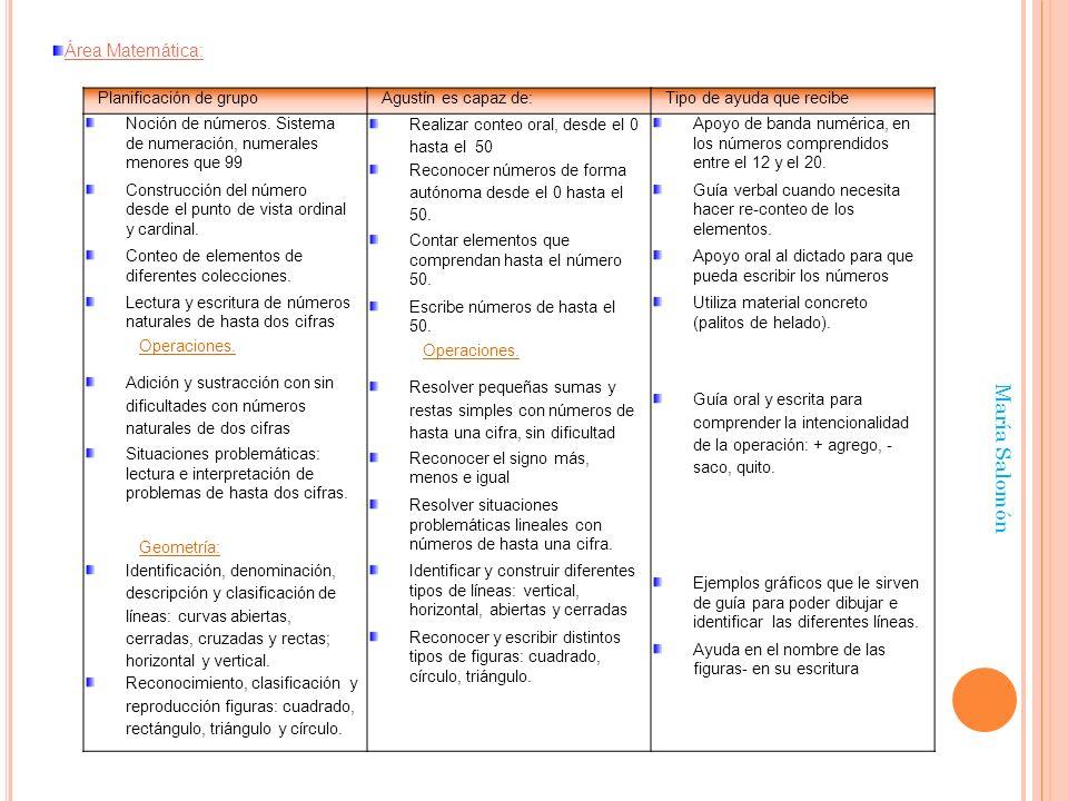 María Salomón Área Matemática: Planificación de grupo