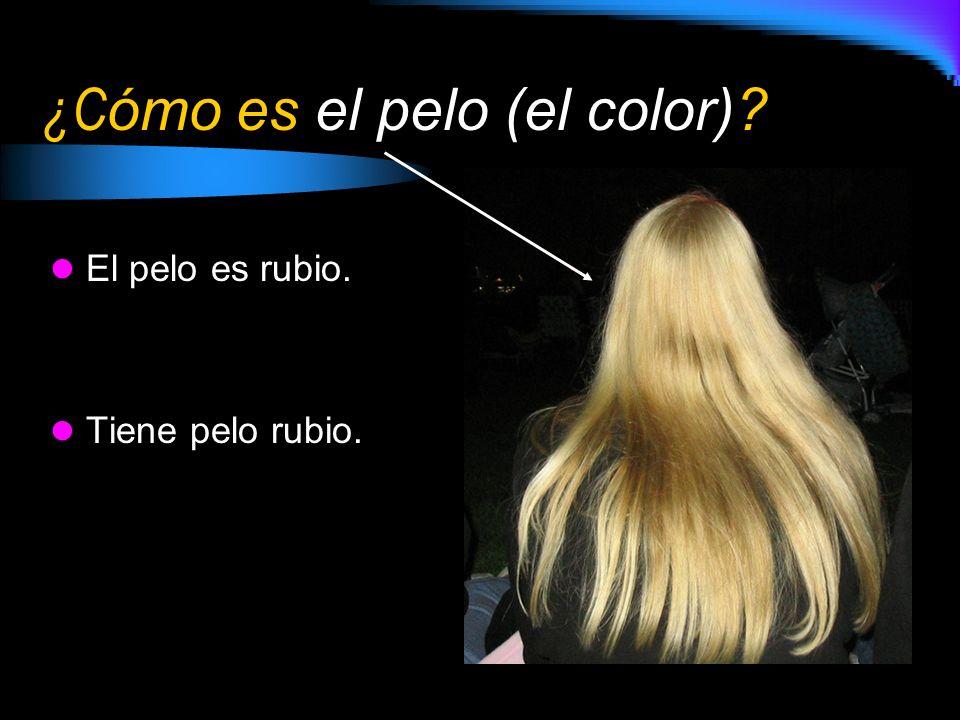 ¿Cómo es el pelo (el color)