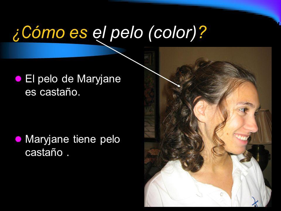 ¿Cómo es el pelo (color)