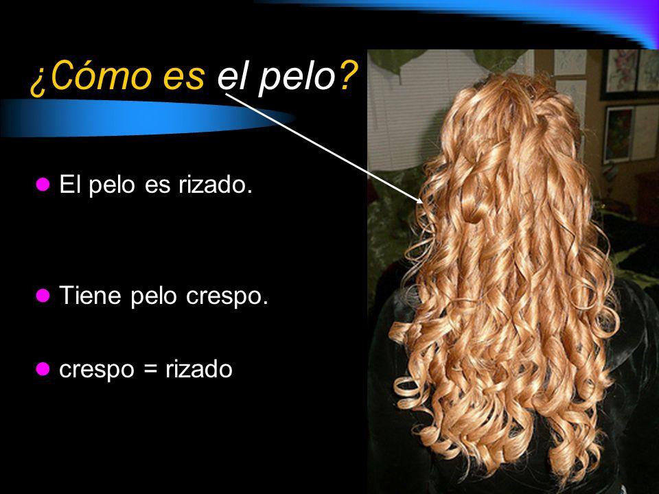 ¿Cómo es el pelo El pelo es rizado. Tiene pelo crespo.