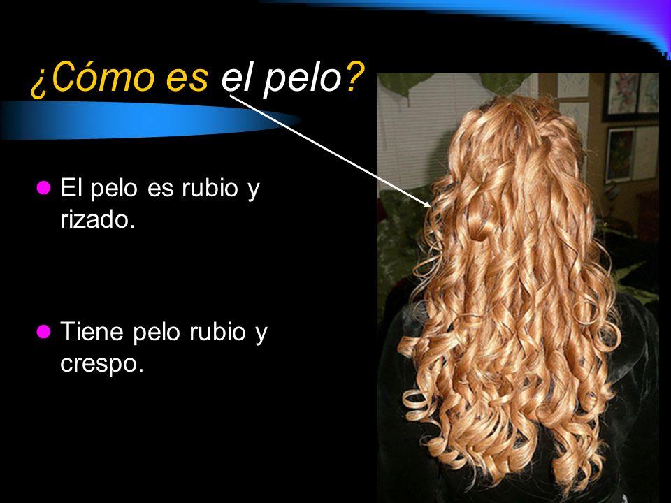¿Cómo es el pelo El pelo es rubio y rizado.