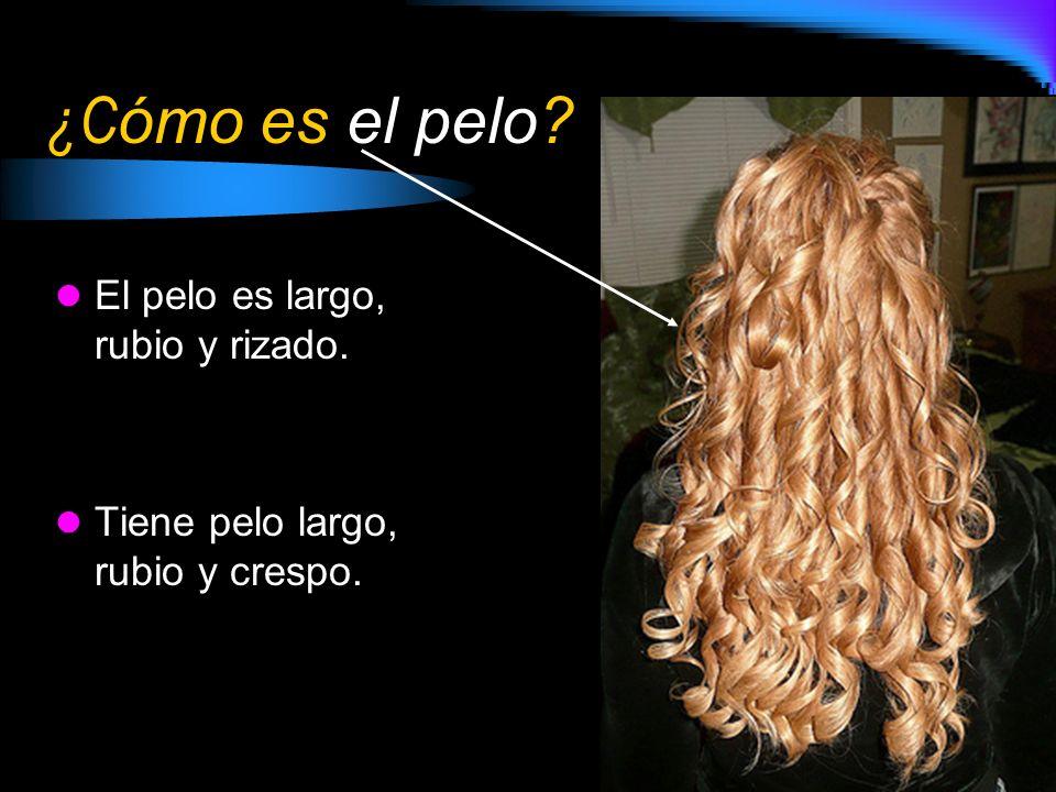¿Cómo es el pelo El pelo es largo, rubio y rizado.