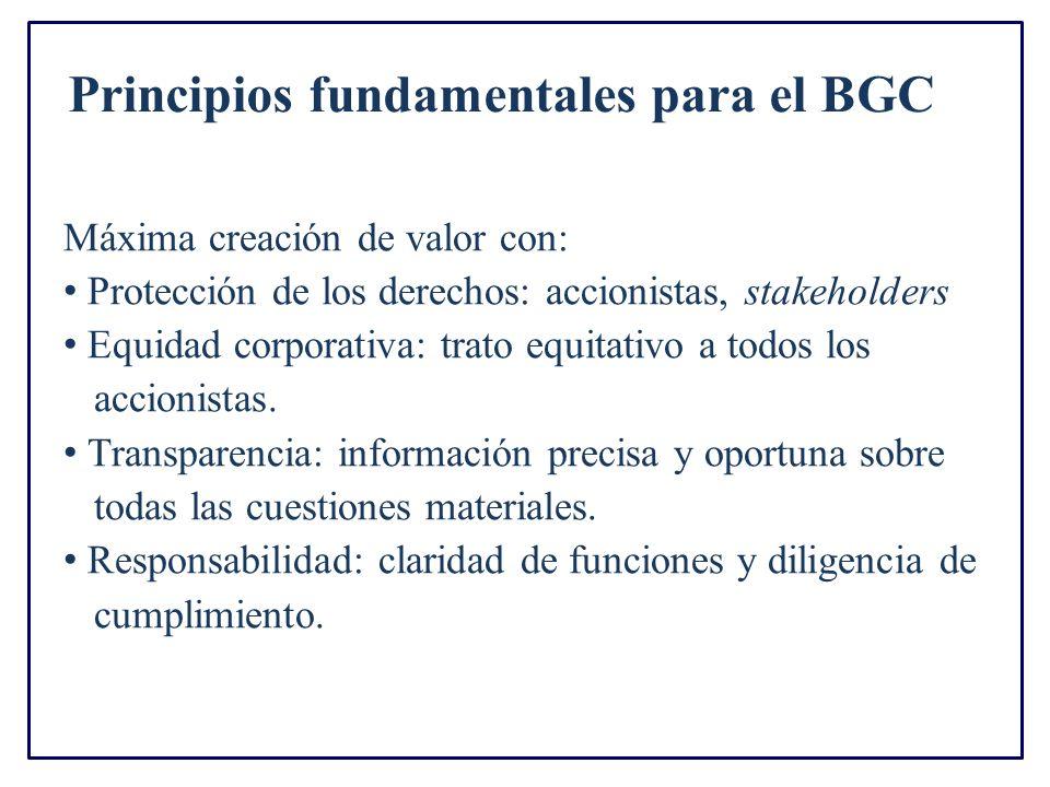 Principios fundamentales para el BGC