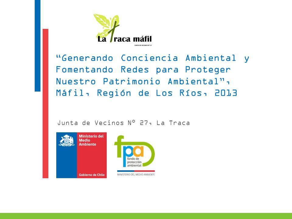 Máfil, Región de Los Ríos, 2013