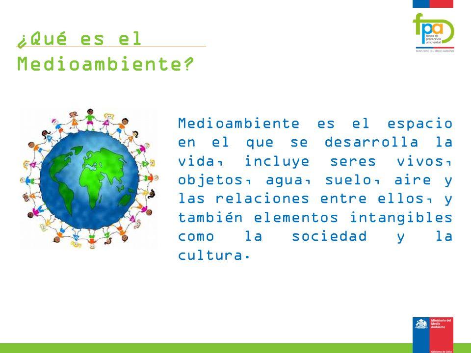 ¿Qué es el Medioambiente