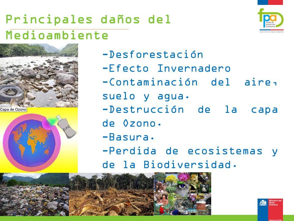 Principales daños del Medioambiente
