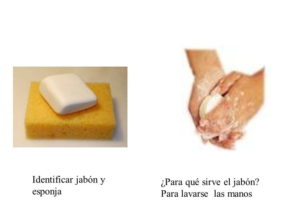 Identificar jabón y esponja