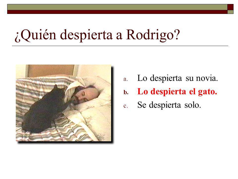 ¿Quién despierta a Rodrigo