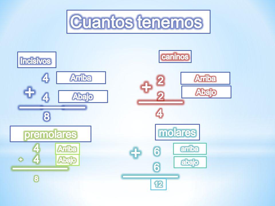 + + ____ ______ + _____ _____ Cuantos tenemos 4 2 2 4 4 8 molares