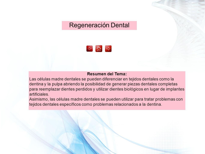 Regeneración Dental Resumen del Tema: