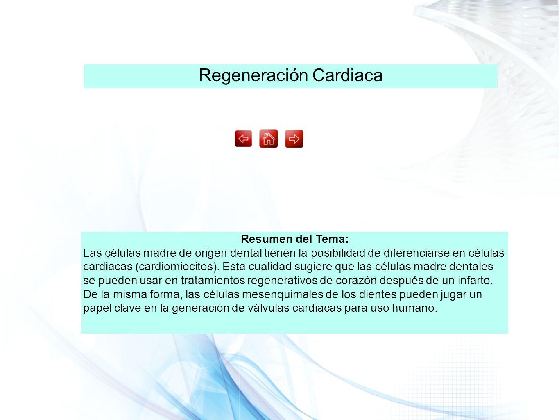 Regeneración Cardiaca