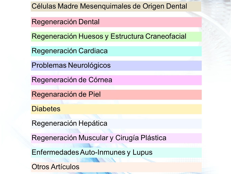 Células Madre Mesenquimales de Origen Dental