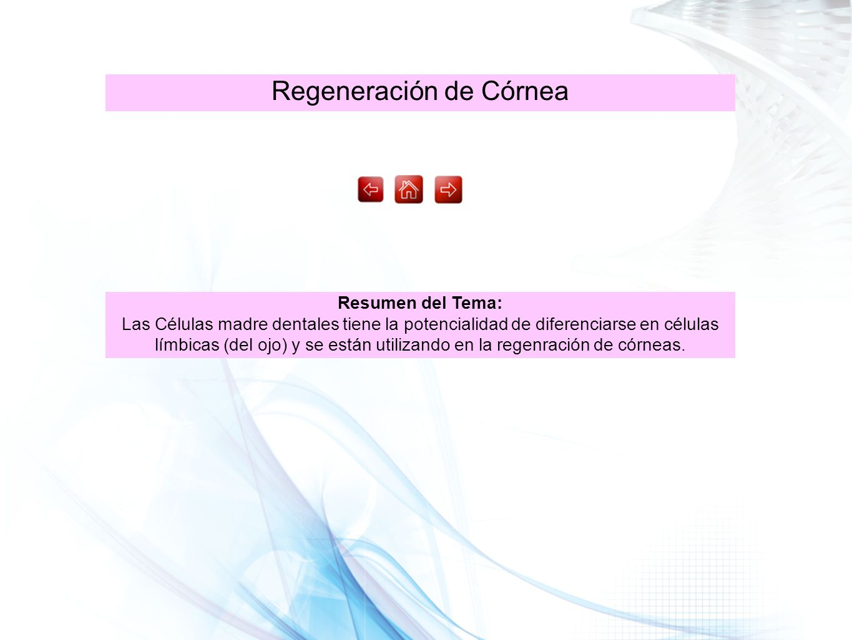 Regeneración de Córnea
