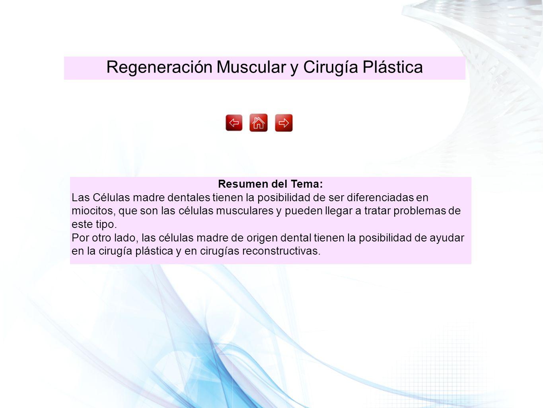 Regeneración Muscular y Cirugía Plástica