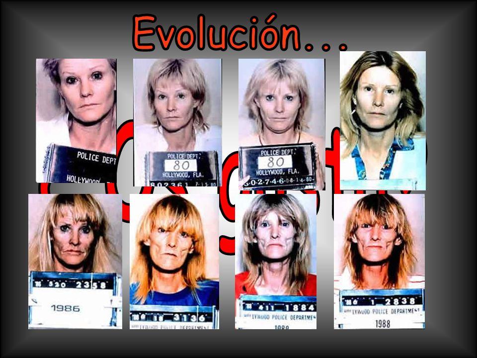 Evolución... ¿ Os gusta